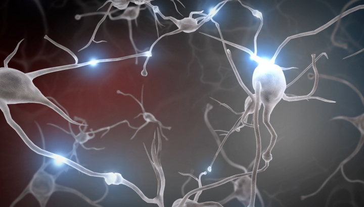 neurons-screenshot-300